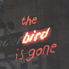 Removed to the Signifier: Utopia in Stephen Graham Jones's The Bird Is Gone: A monograph Manifesto (2003)