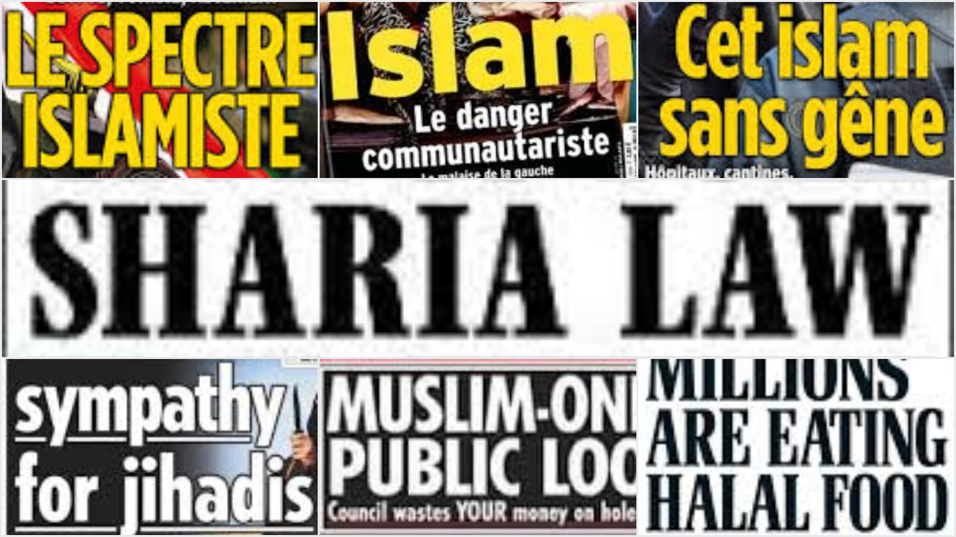 Muslims in the Media